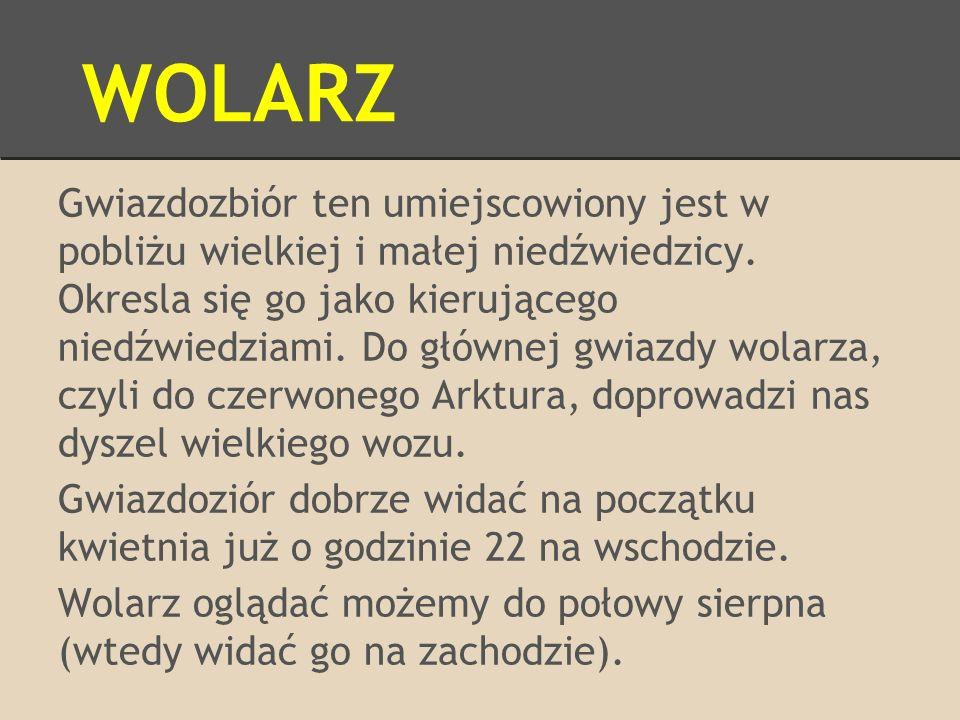 WOLARZ