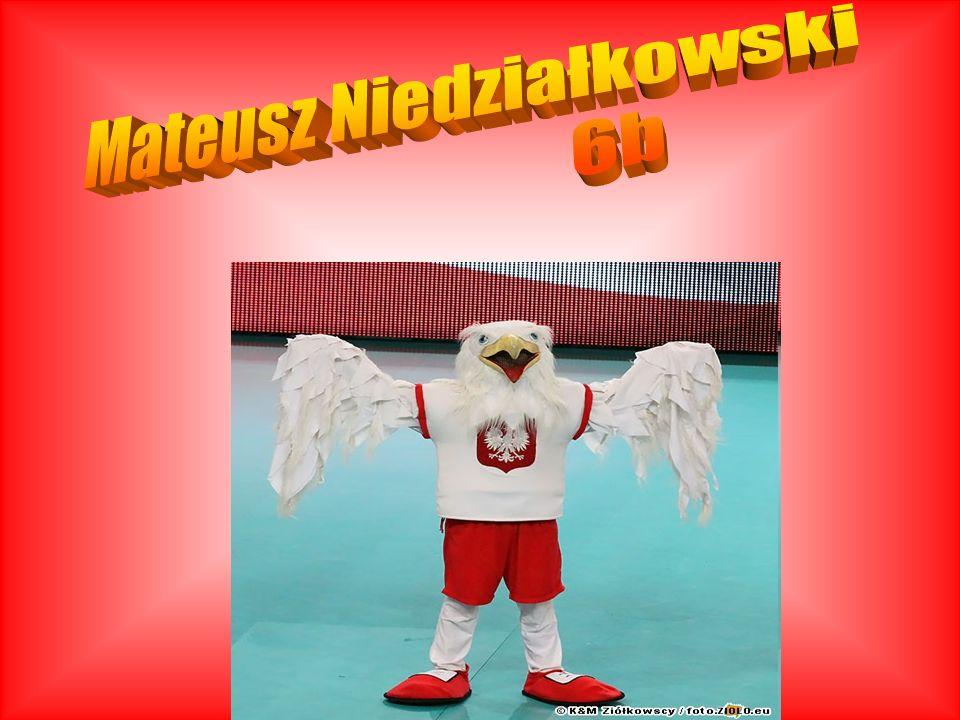 Mateusz Niedziałkowski