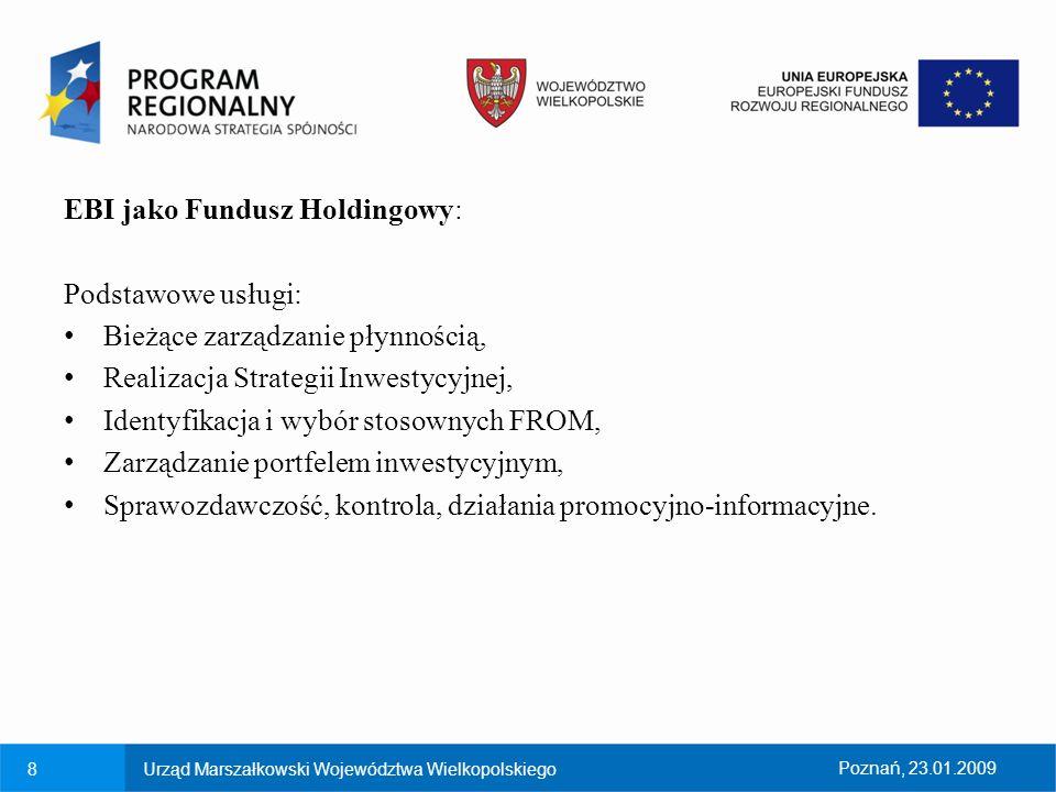 EBI jako Fundusz Holdingowy: Podstawowe usługi: