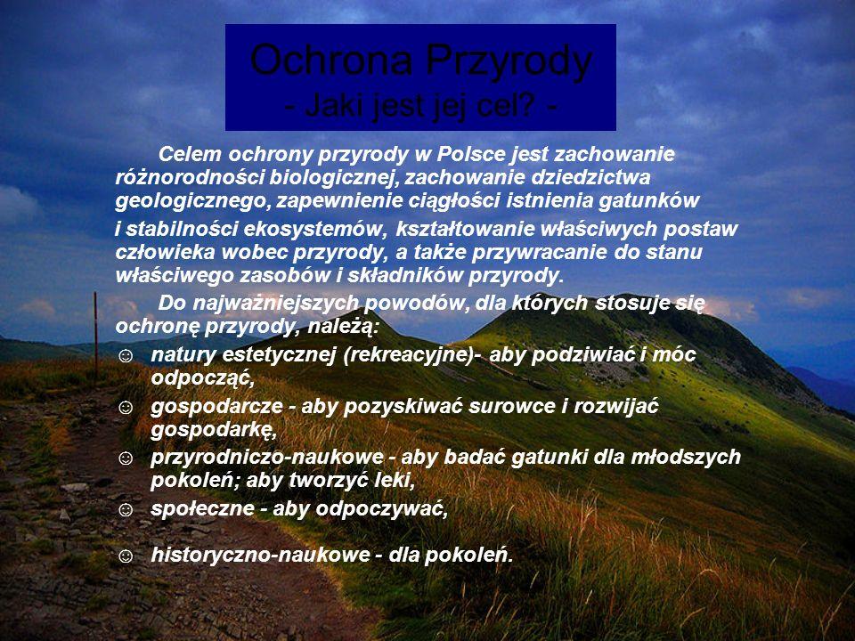 Ochrona Przyrody - Jaki jest jej cel -