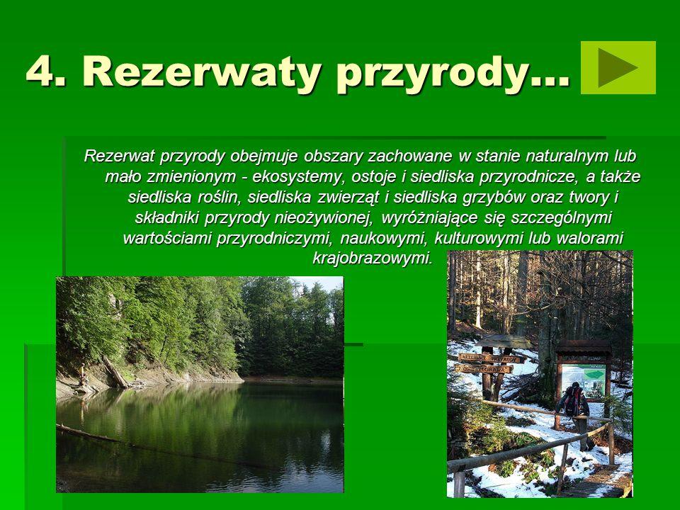 4. Rezerwaty przyrody…