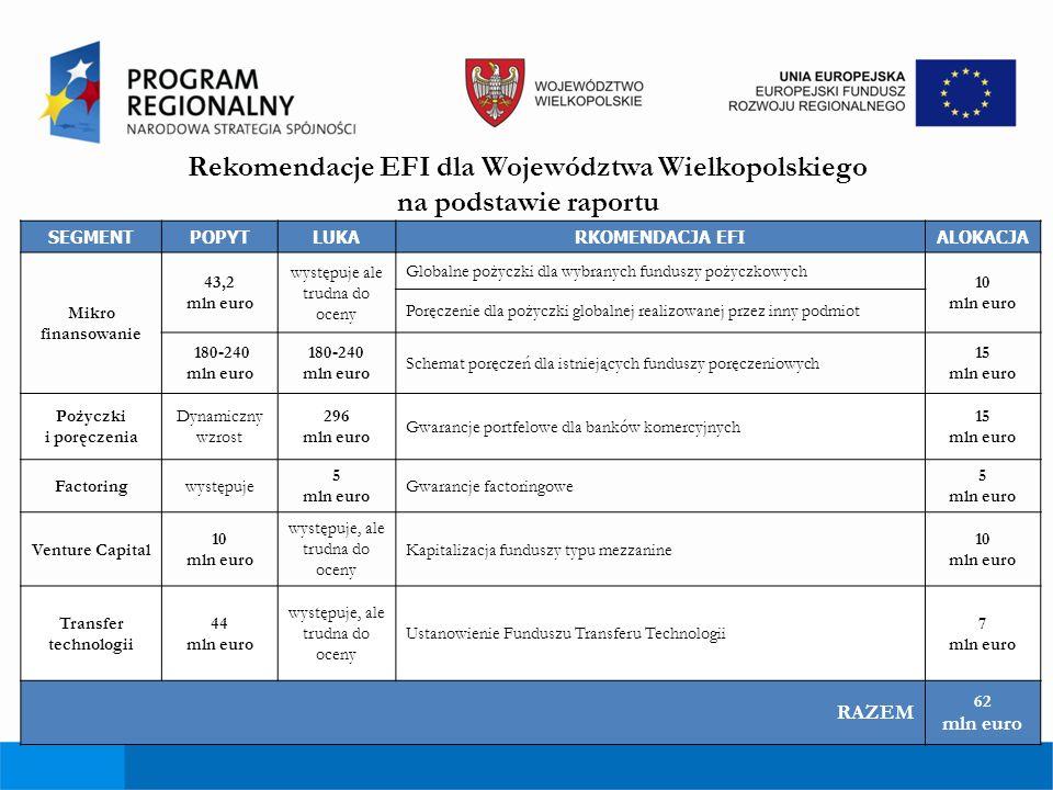 Rekomendacje EFI dla Województwa Wielkopolskiego na podstawie raportu