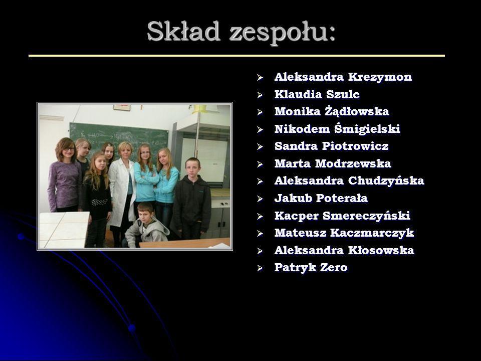 Skład zespołu: Aleksandra Krezymon Klaudia Szulc Monika Żądłowska