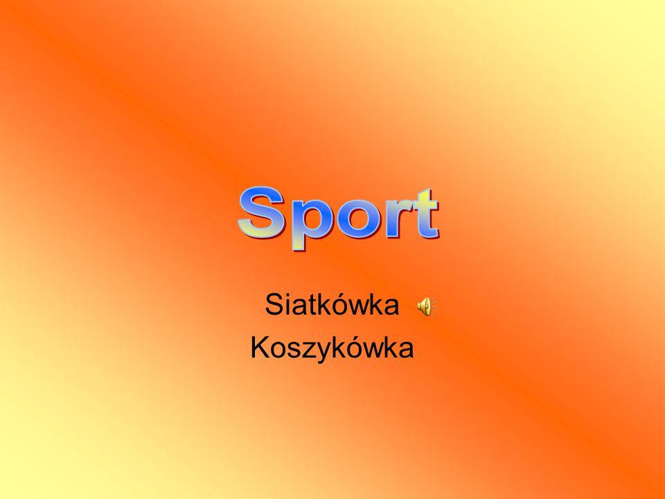 Sport Siatkówka Koszykówka