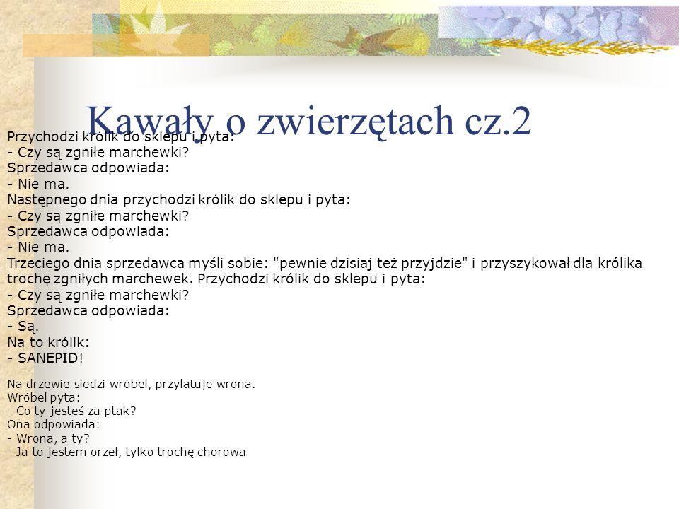 Kawały o zwierzętach cz.2