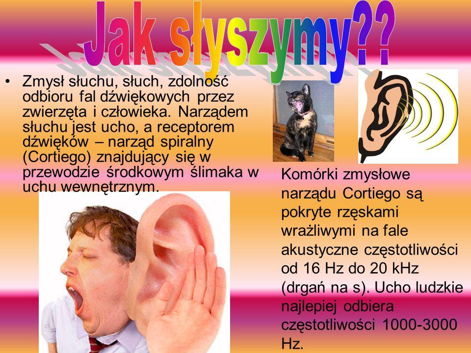 Jak słyszymy