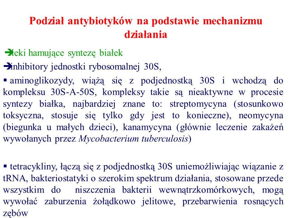 Podział antybiotyków na podstawie mechanizmu działania