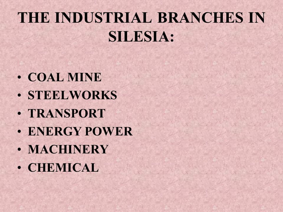 THE INDUSTRIAL BRANCHES IN SILESIA: