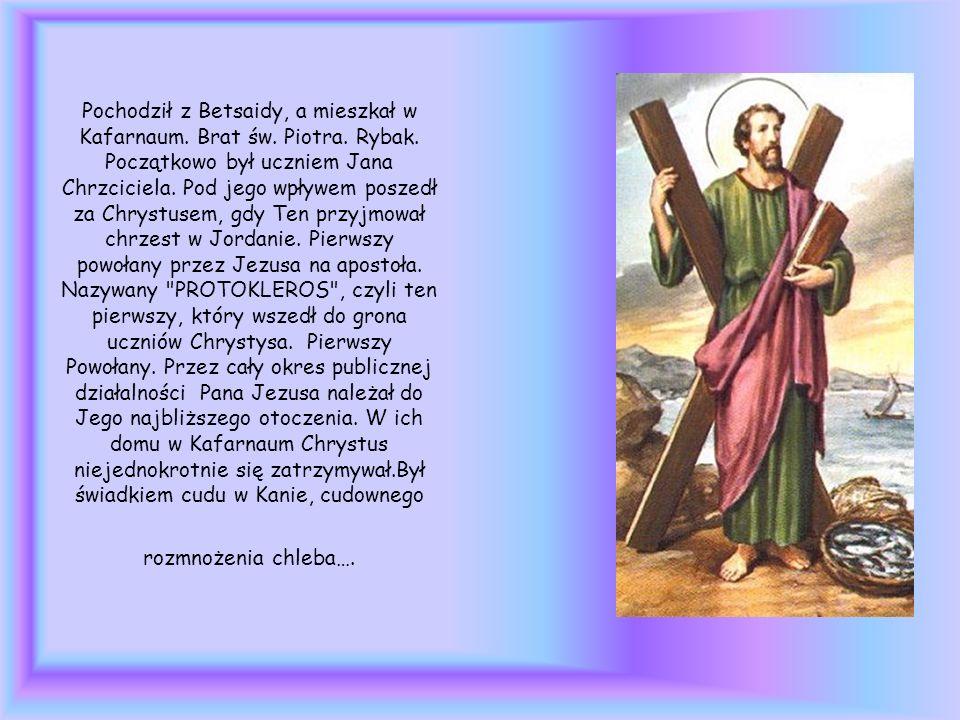Pochodził z Betsaidy, a mieszkał w Kafarnaum. Brat św. Piotra. Rybak
