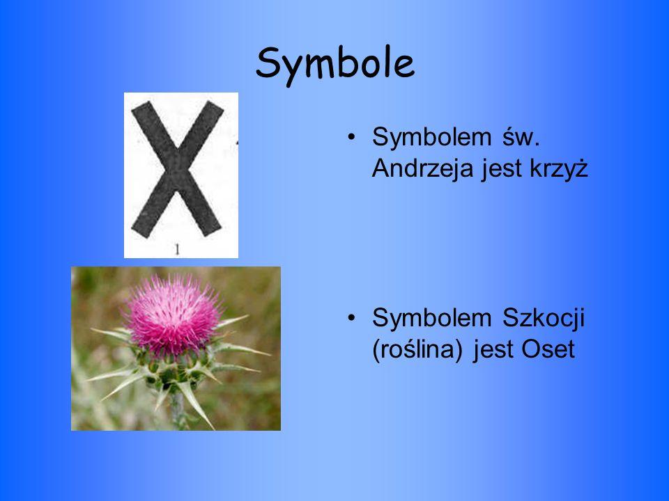 Symbole Symbolem św. Andrzeja jest krzyż