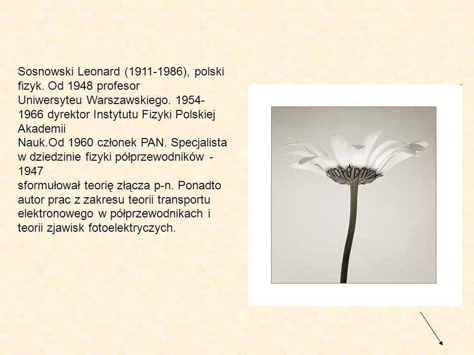 Sosnowski Leonard (1911-1986), polski fizyk