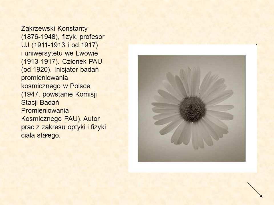 Zakrzewski Konstanty (1876-1948), fizyk, profesor UJ (1911-1913 i od 1917) i uniwersytetu we Lwowie (1913-1917).