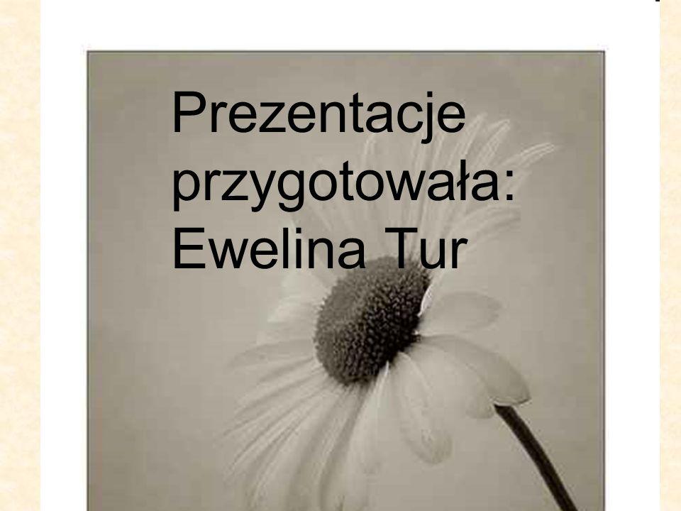 Prezentacje przygotowała: Ewelina Tur