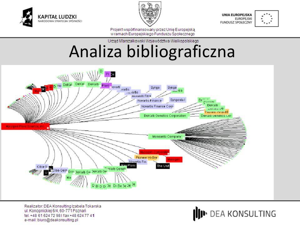 Analiza bibliograficzna