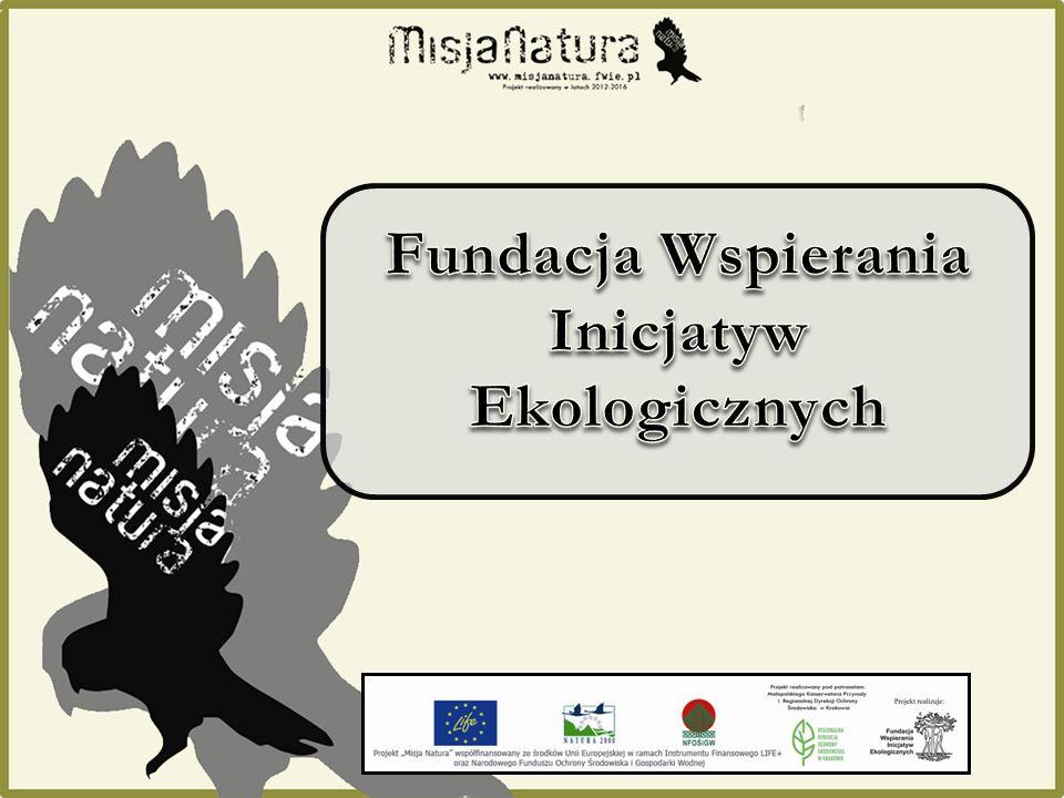 Fundacja Wspierania Inicjatyw Ekologicznych