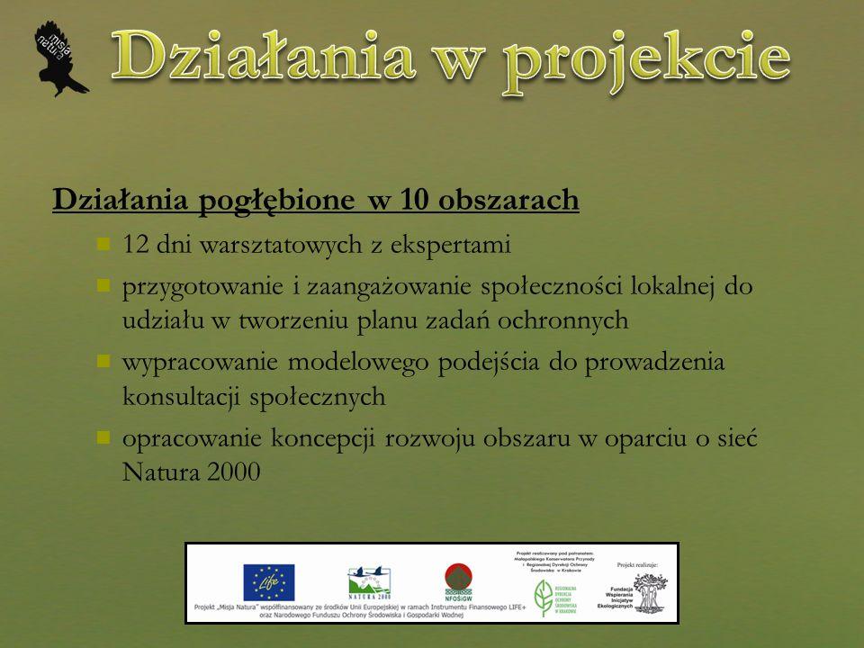 Działania w projekcie Działania pogłębione w 10 obszarach