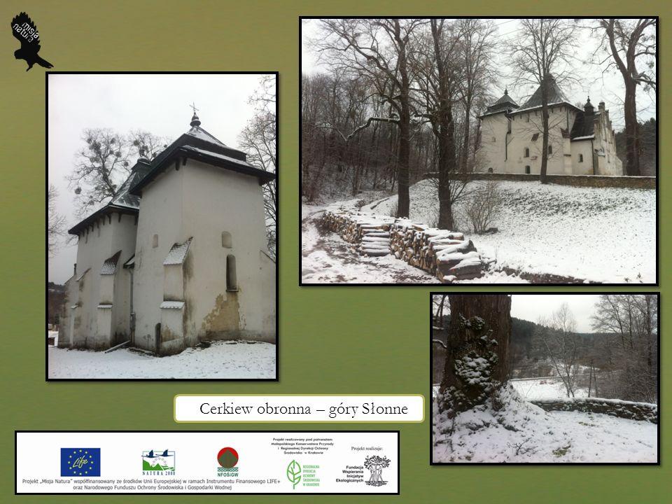 Cerkiew obronna – góry Słonne