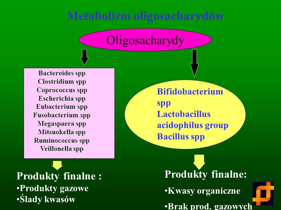Metabolizm oligosacharydów