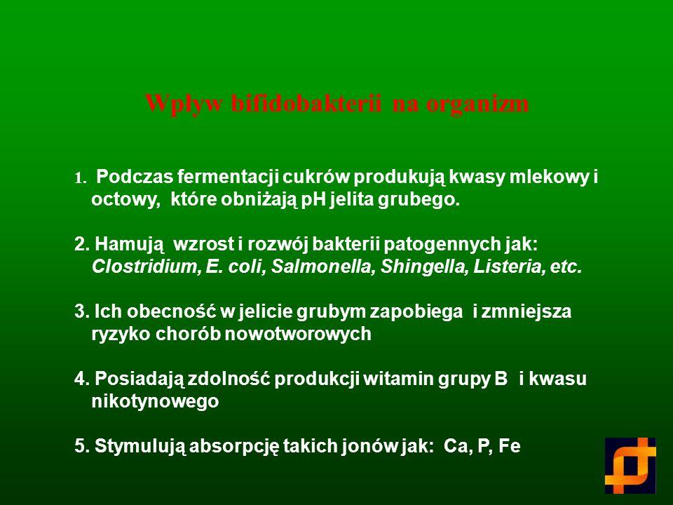 Wpływ bifidobakterii na organizm