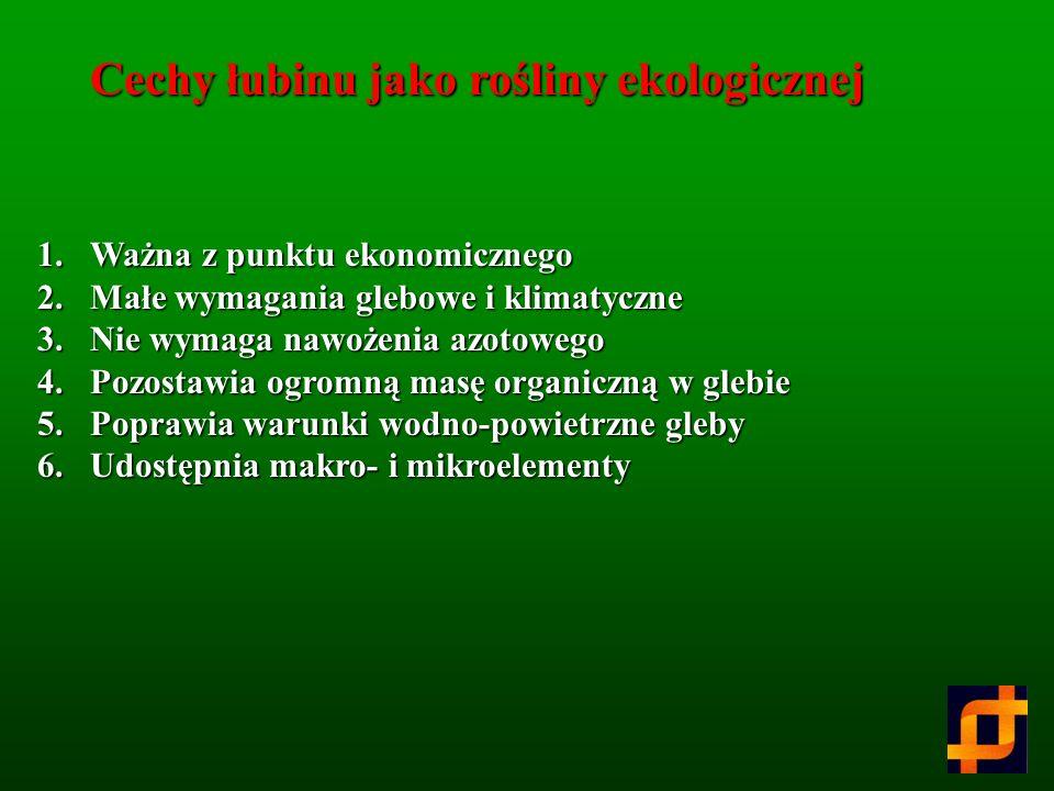 Cechy łubinu jako rośliny ekologicznej