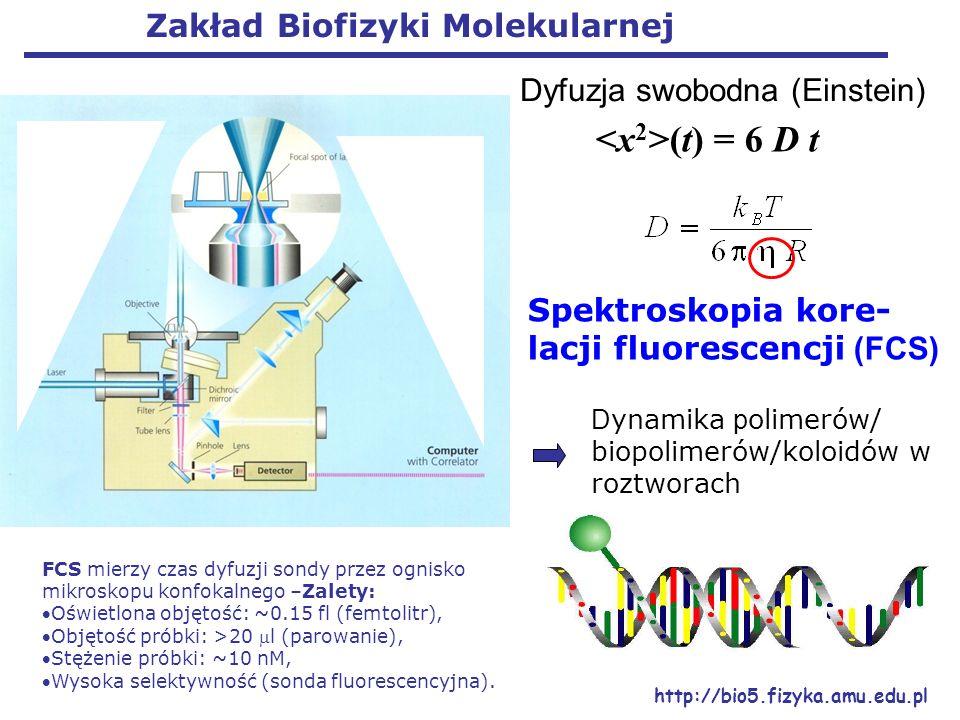 <x2>(t) = 6 D t Zakład Biofizyki Molekularnej