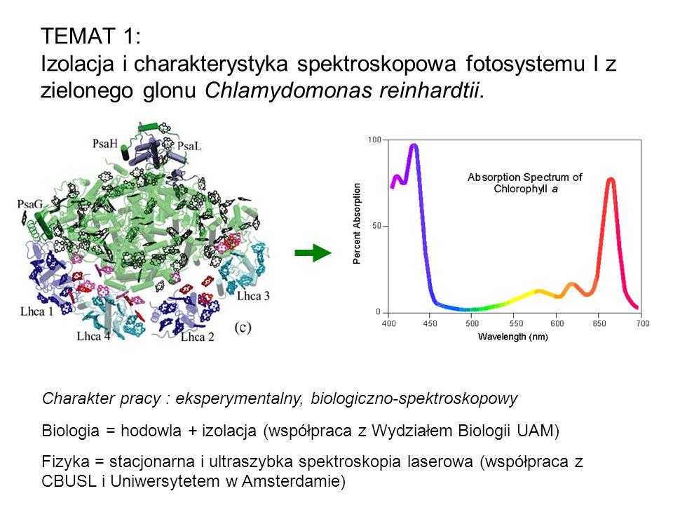 TEMAT 1: Izolacja i charakterystyka spektroskopowa fotosystemu I z zielonego glonu Chlamydomonas reinhardtii.