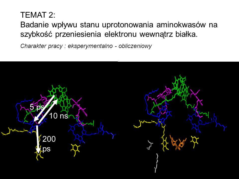 TEMAT 2: Badanie wpływu stanu uprotonowania aminokwasów na szybkość przeniesienia elektronu wewnątrz białka.