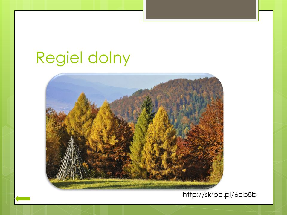 Regiel dolny http://skroc.pl/6eb8b