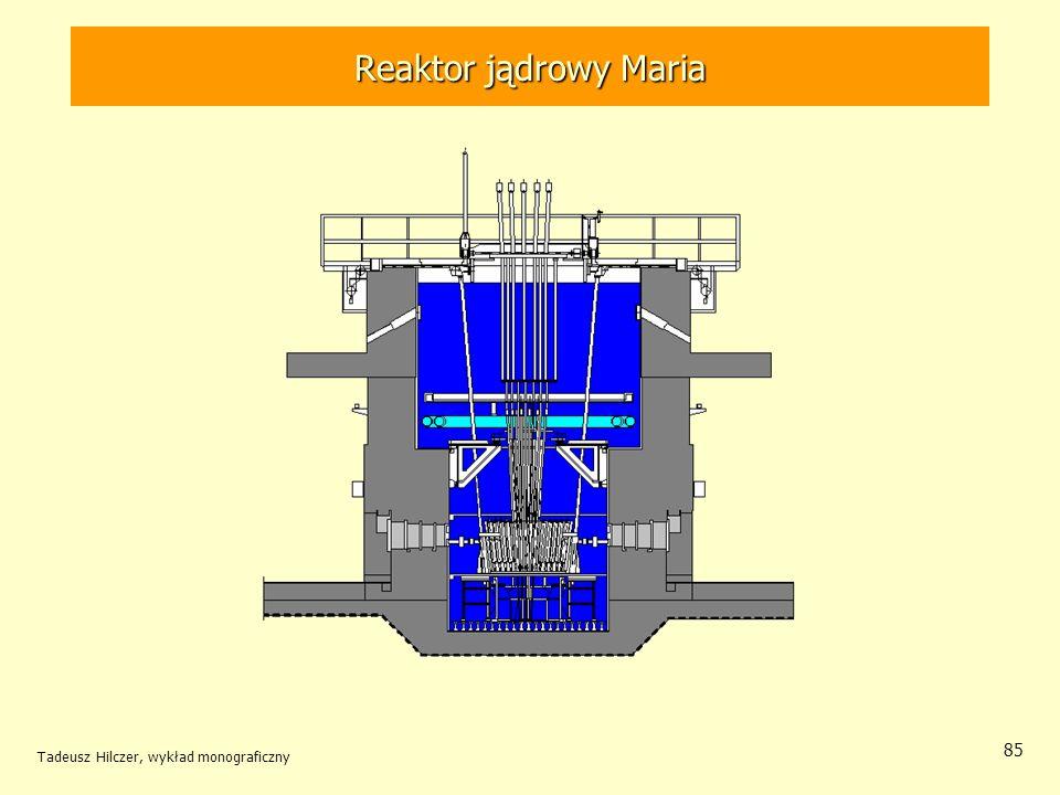 Reaktor jądrowy Maria Tadeusz Hilczer, wykład monograficzny