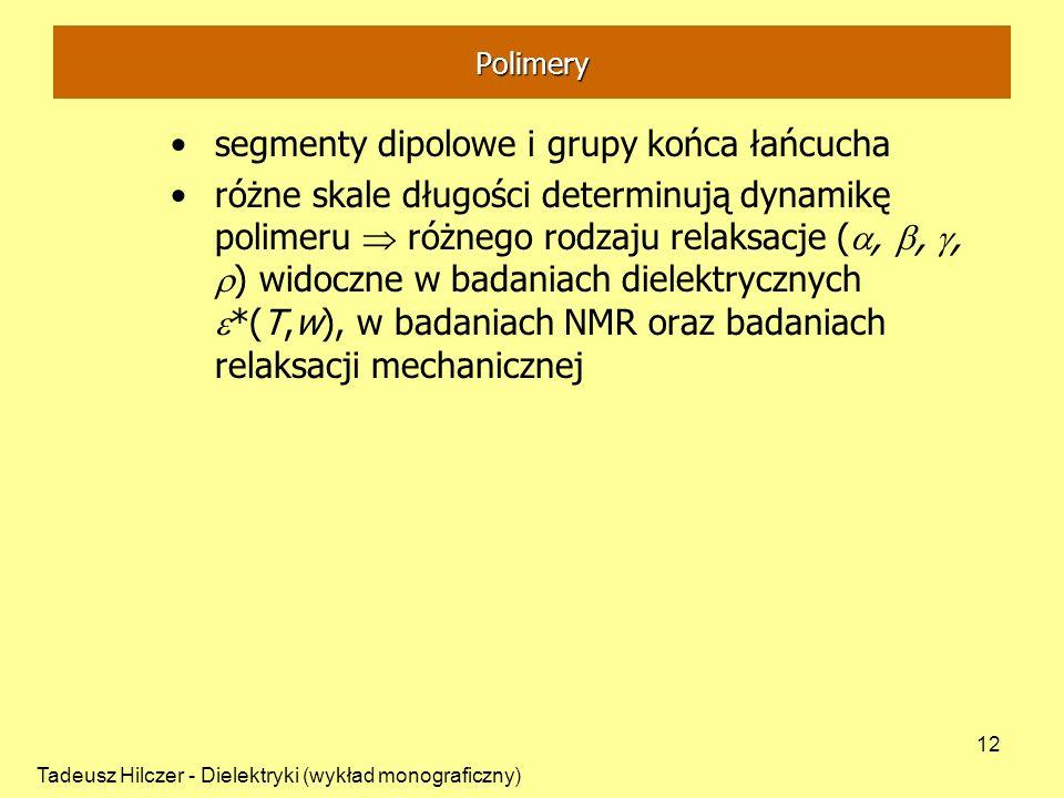 segmenty dipolowe i grupy końca łańcucha