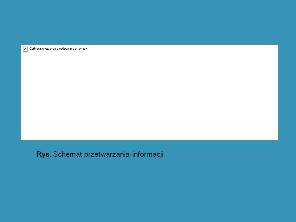 Rys. Schemat przetwarzania informacji