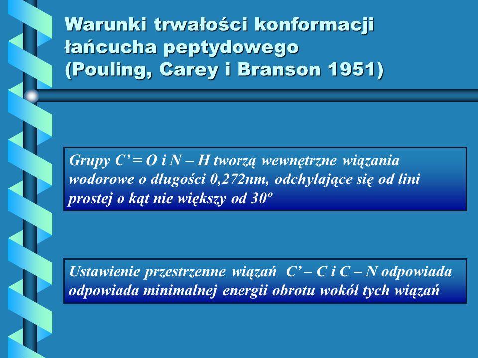 Warunki trwałości konformacji łańcucha peptydowego