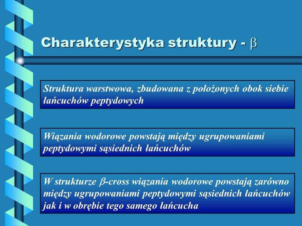 Charakterystyka struktury - 
