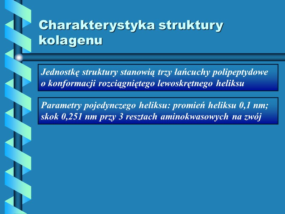 Charakterystyka struktury kolagenu