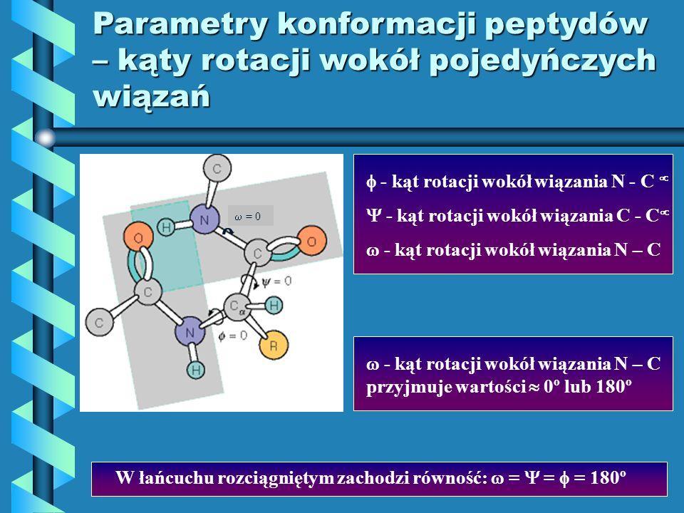 Parametry konformacji peptydów – kąty rotacji wokół pojedyńczych wiązań