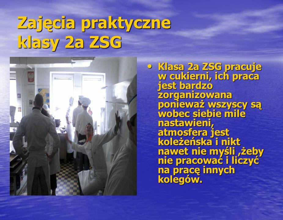 Zajęcia praktyczne klasy 2a ZSG