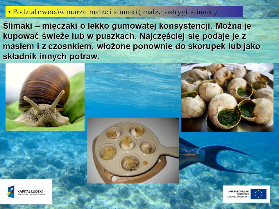 Podział owoców morza małże i ślimaki ( małże, ostrygi, ślimaki)