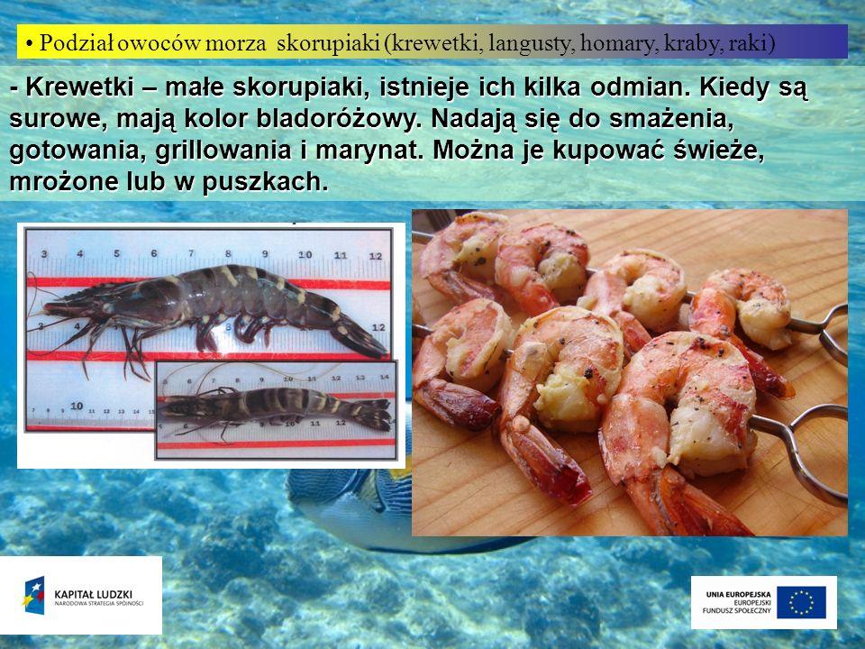 Podział owoców morza skorupiaki (krewetki, langusty, homary, kraby, raki)