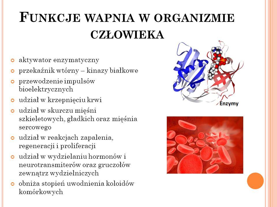 Funkcje wapnia w organizmie człowieka