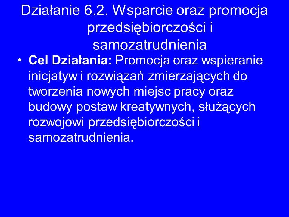 Działanie 6.2. Wsparcie oraz promocja przedsiębiorczości i samozatrudnienia