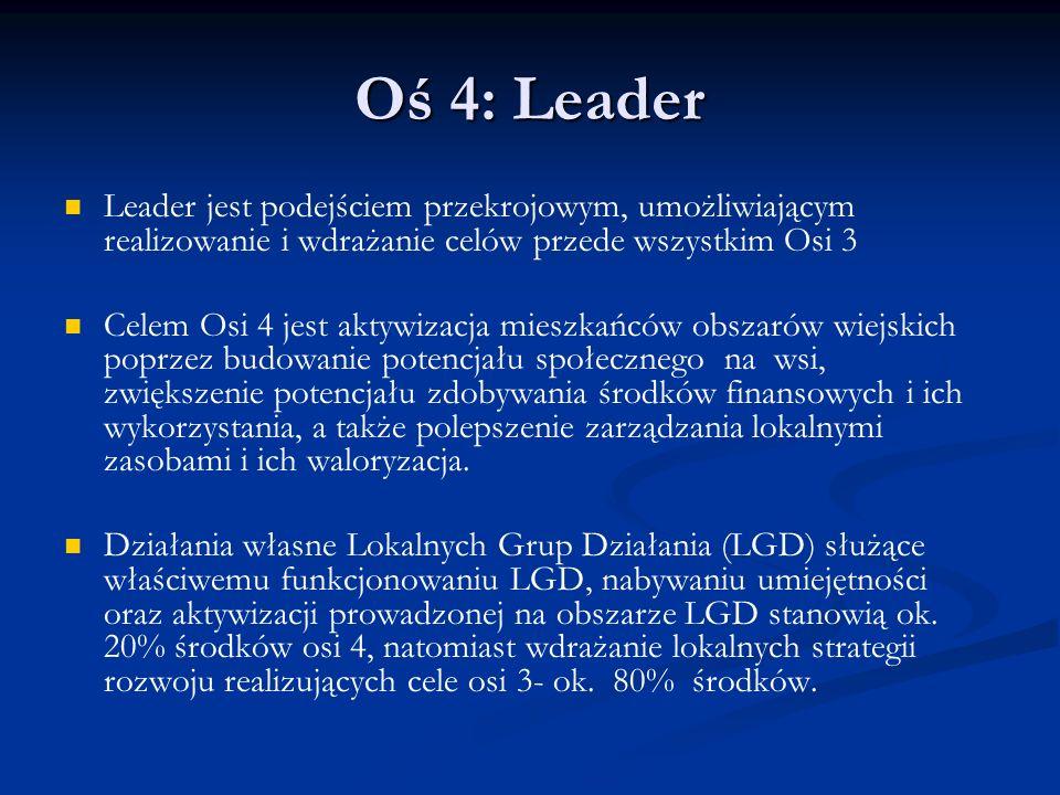 Oś 4: Leader Leader jest podejściem przekrojowym, umożliwiającym realizowanie i wdrażanie celów przede wszystkim Osi 3.