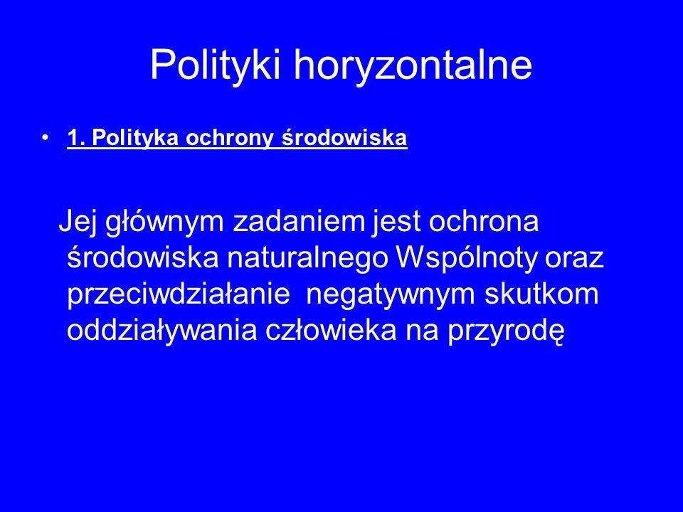 Polityki horyzontalne
