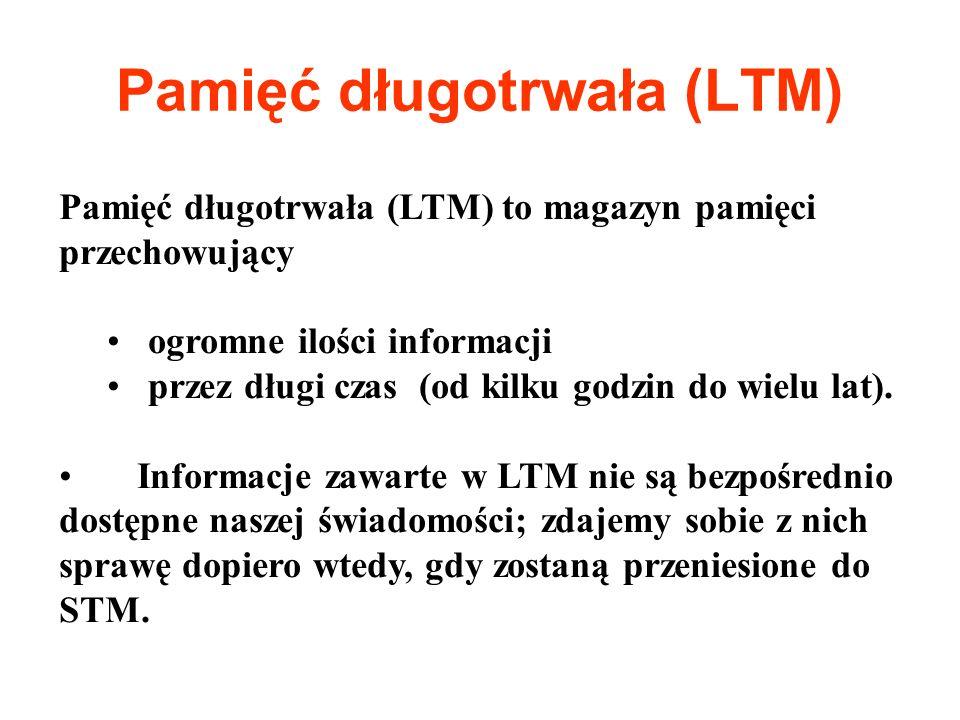 Pamięć długotrwała (LTM)