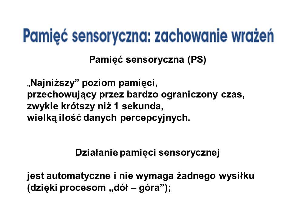 Pamięć sensoryczna (PS) Działanie pamięci sensorycznej
