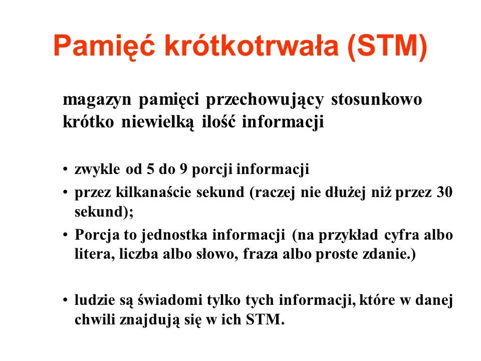 Pamięć krótkotrwała (STM)