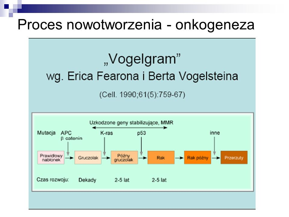 Proces nowotworzenia - onkogeneza