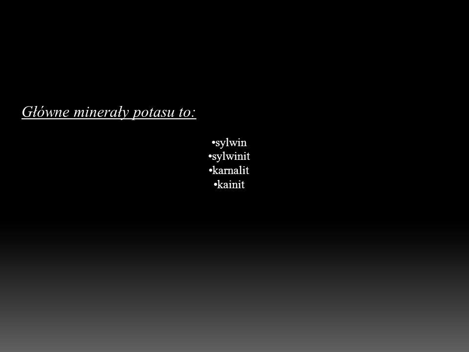 Główne minerały potasu to: