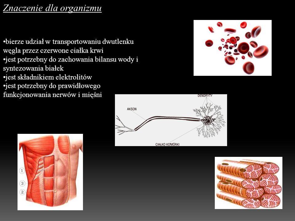Znaczenie dla organizmu