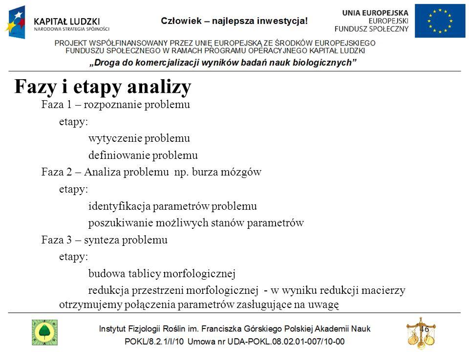 Fazy i etapy analizy