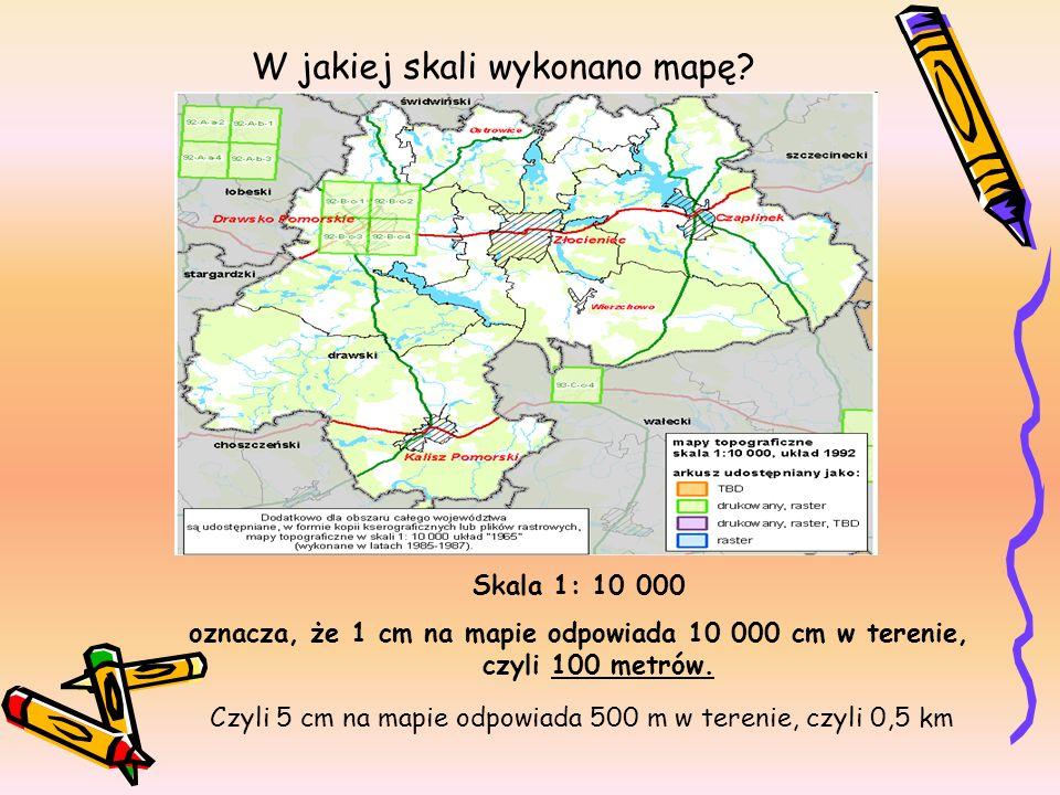 W jakiej skali wykonano mapę